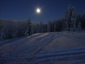 winter-1291479_960_720