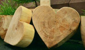 wood-1452655_960_720